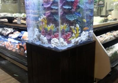 Custom acrylic aquarium(3)