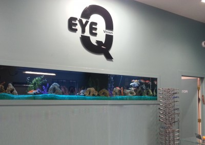 Custom glass built-in wall fishtank aquarium