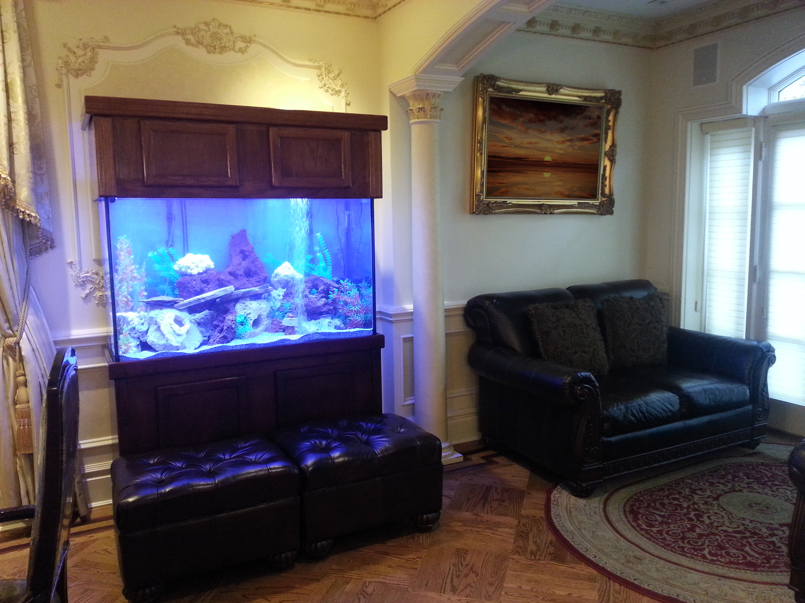 Aquarium Living Room Lilalice
